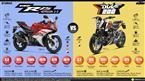 Yamaha YZF-R15 vs. KTM 200 Duke image
