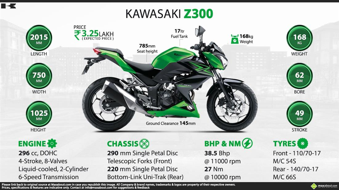 Kawasaki Z300 Street Fighter Price Specs Review Pics